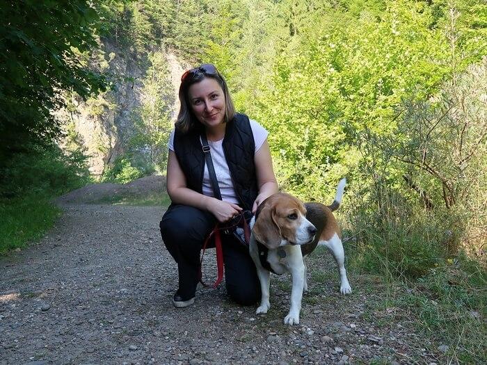 Vacanţa La Munte Cu Kimi – Viata Cu Un Beagle