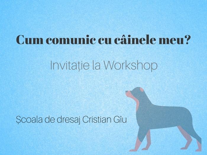 Invitație La Workshop – Școala De Dresaj Cristian Gîu